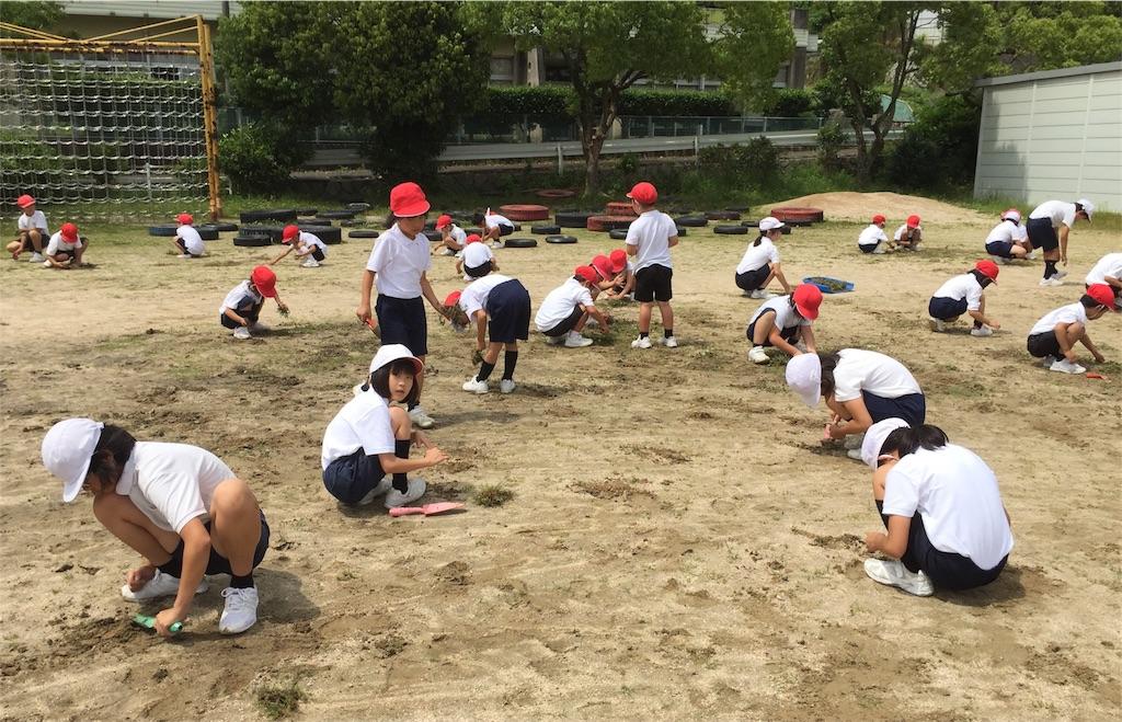 f:id:fukugawa-es:20180607141047j:image