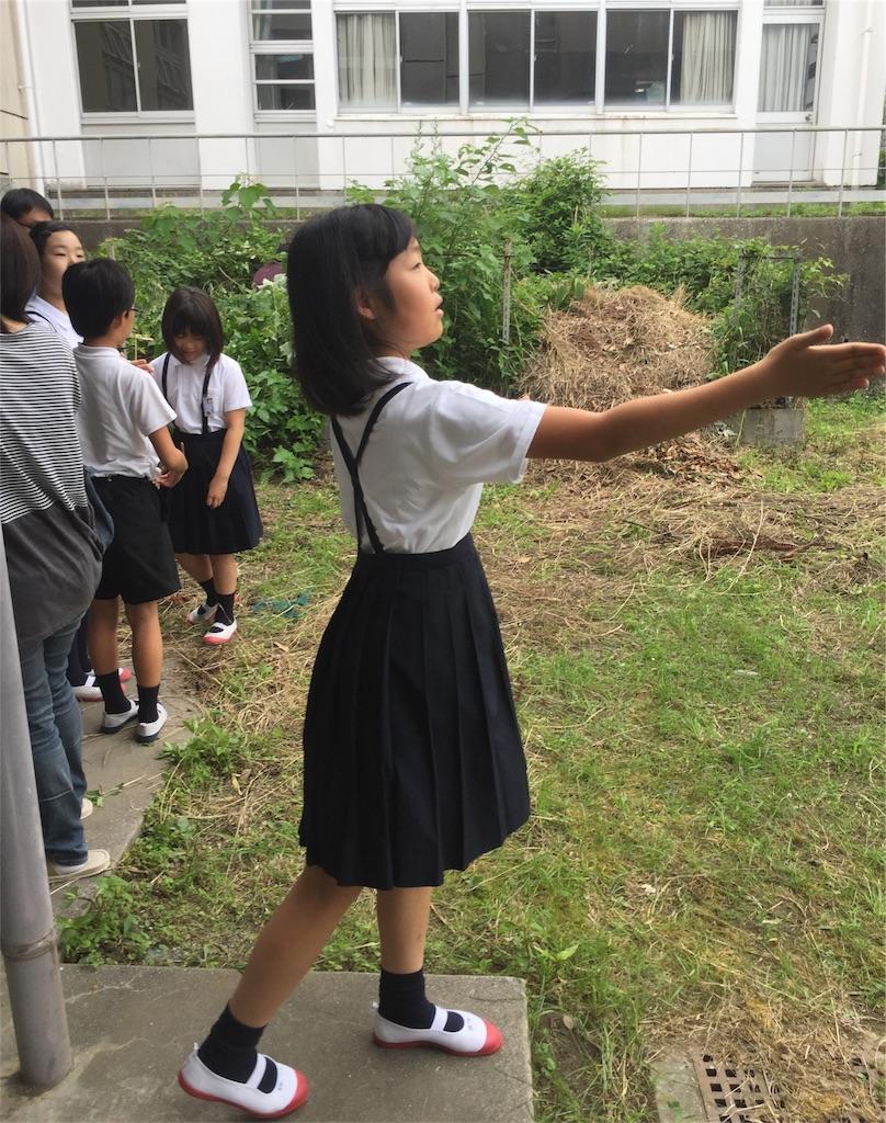 f:id:fukugawa-es:20180610114428j:image