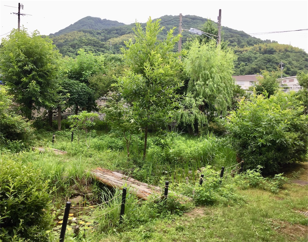 f:id:fukugawa-es:20180627125231j:image