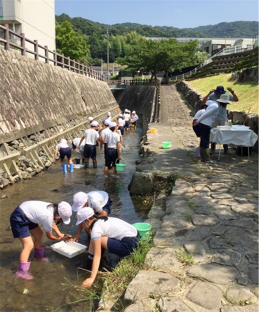 f:id:fukugawa-es:20180717110307j:image