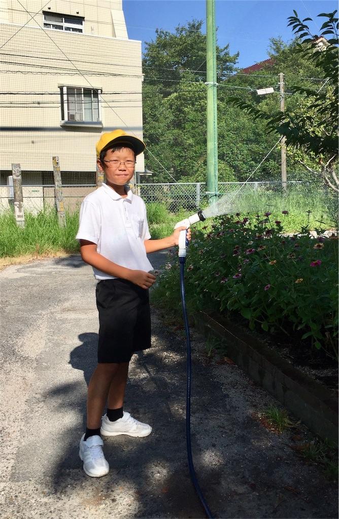 f:id:fukugawa-es:20180801084204j:image