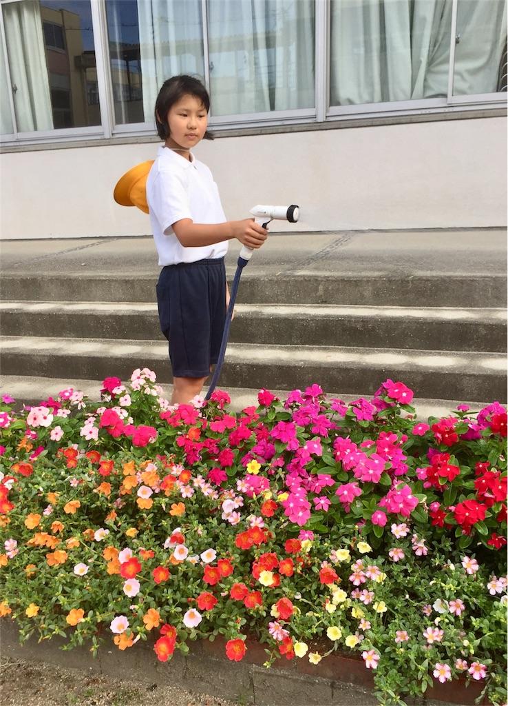 f:id:fukugawa-es:20180821082739j:image