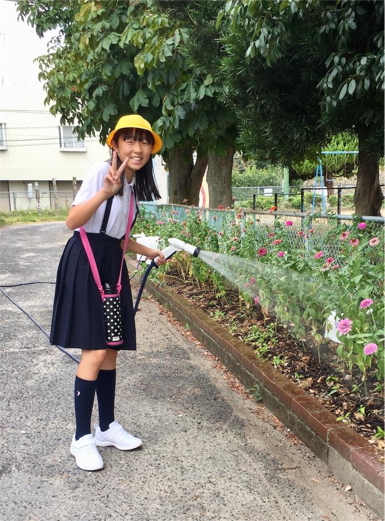 f:id:fukugawa-es:20180822090110j:image