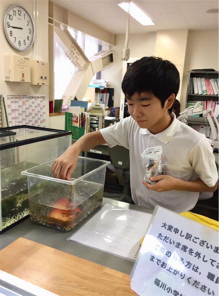 f:id:fukugawa-es:20180822090114j:image