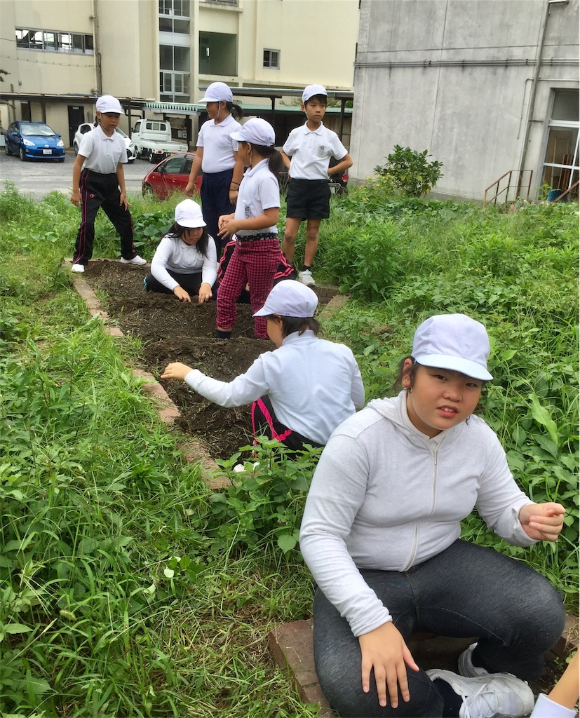 f:id:fukugawa-es:20181002172519j:image