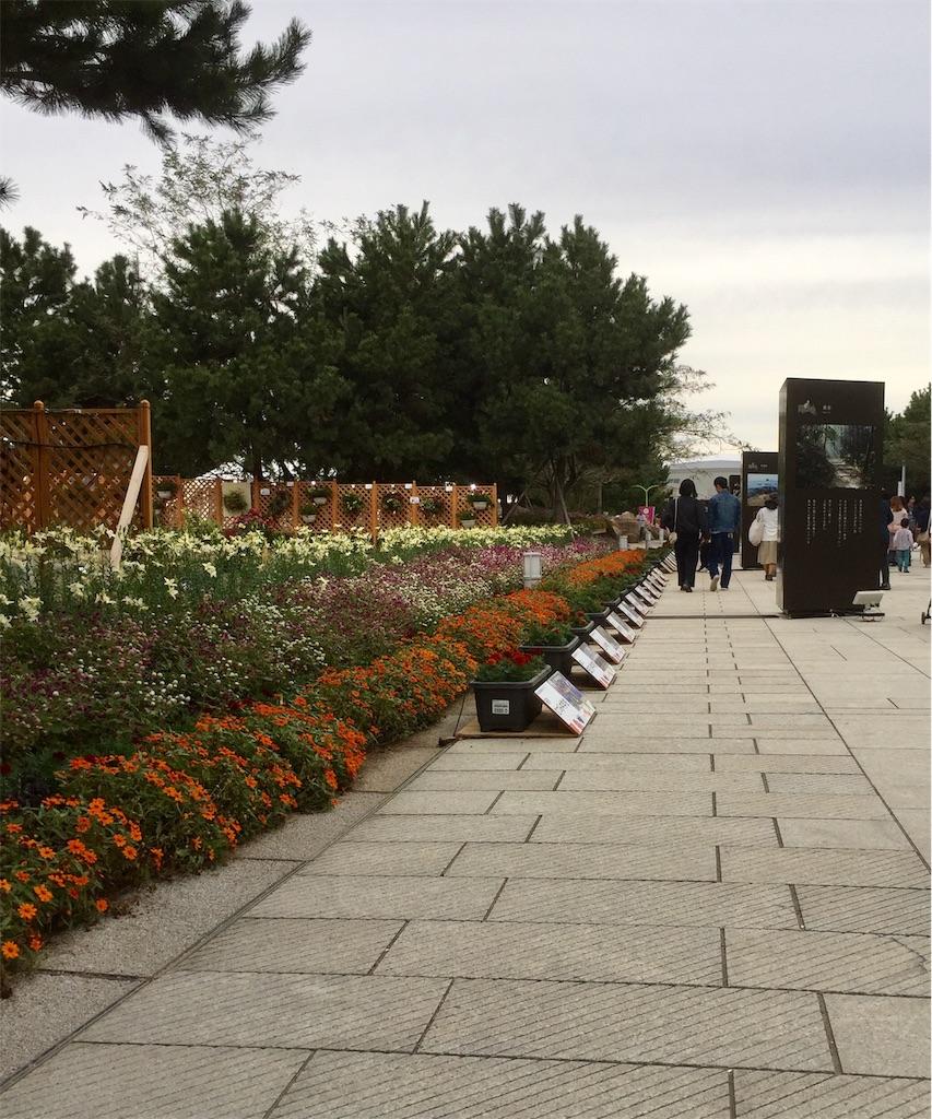 f:id:fukugawa-es:20181014183912j:image