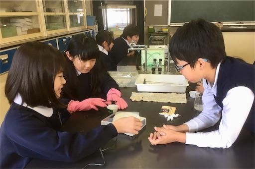 f:id:fukugawa-es:20190204140903j:image