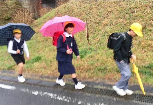 f:id:fukugawa-es:20190228082349j:image