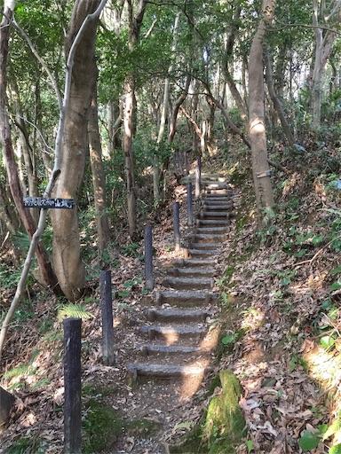 f:id:fukugawa-es:20190301092213j:image
