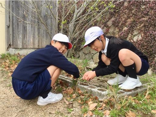 f:id:fukugawa-es:20190411135124j:image