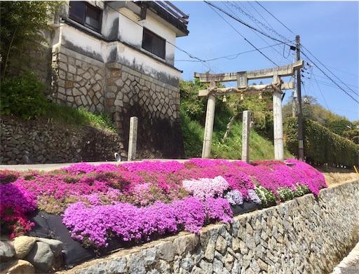 f:id:fukugawa-es:20190418135819j:image