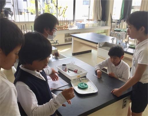 f:id:fukugawa-es:20190419183300j:image