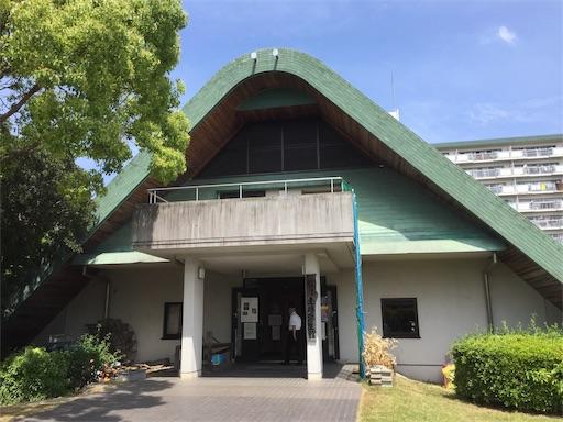 f:id:fukugawa-es:20190516122631j:image