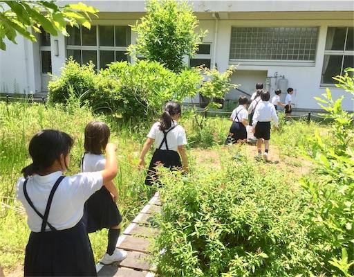 f:id:fukugawa-es:20190524173712j:image