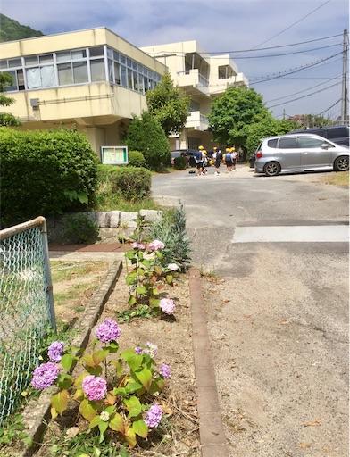 f:id:fukugawa-es:20190603174604j:image