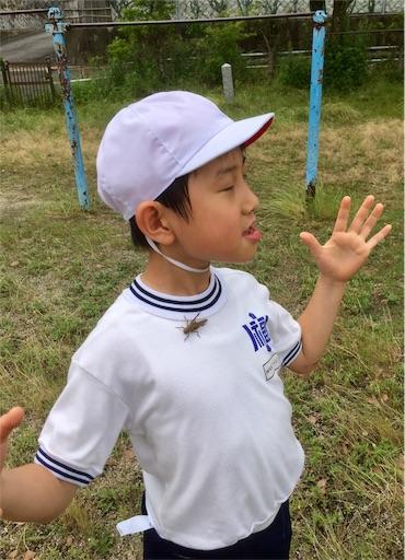 f:id:fukugawa-es:20190607135307j:image