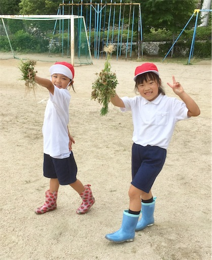 f:id:fukugawa-es:20190710141434j:image