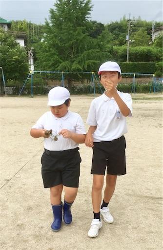 f:id:fukugawa-es:20190710141437j:image