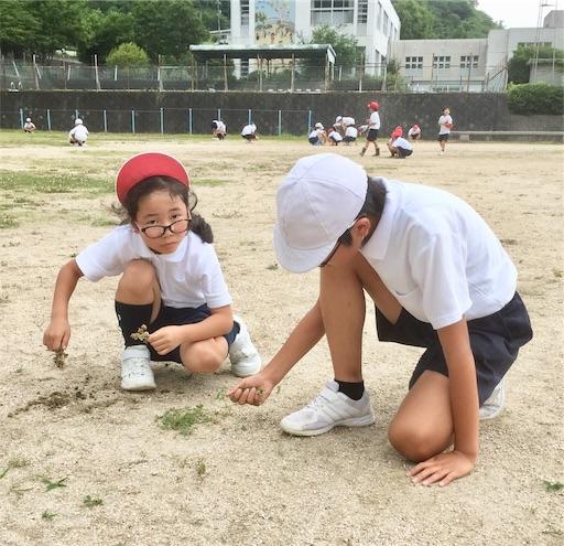 f:id:fukugawa-es:20190710141447j:image