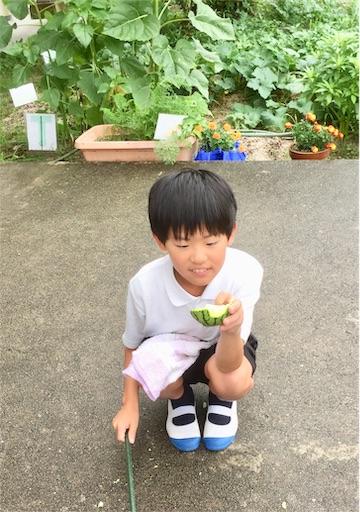 f:id:fukugawa-es:20190719151941j:image