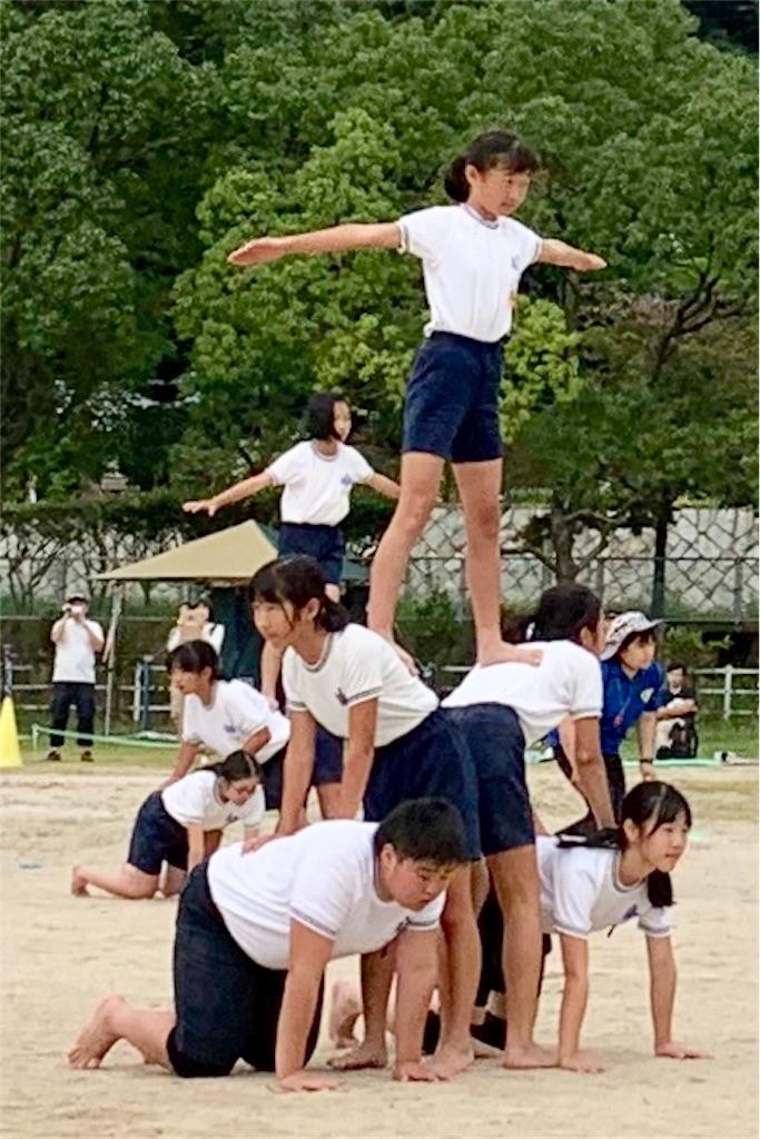 f:id:fukugawa-es:20190922142944j:image