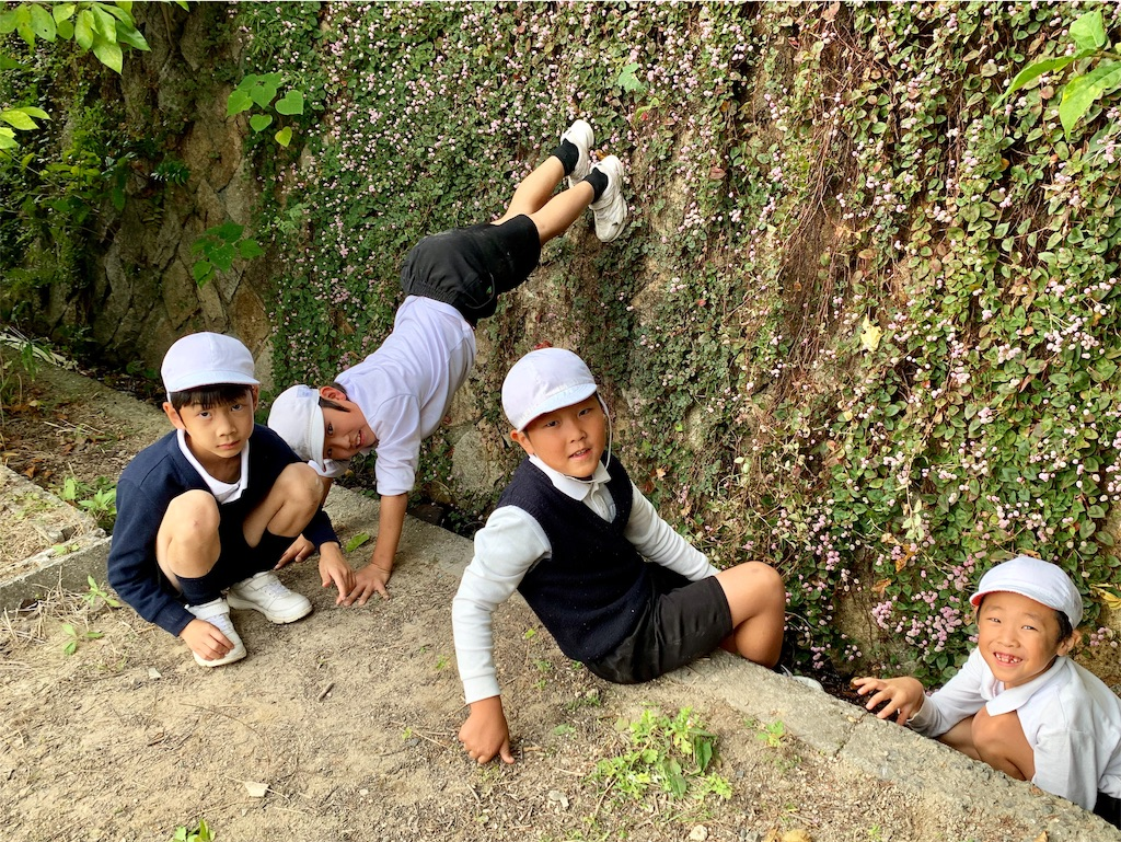 f:id:fukugawa-es:20191107143301j:image