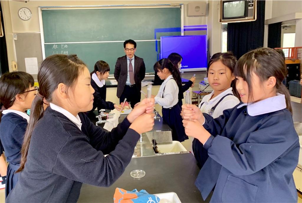 f:id:fukugawa-es:20191119131502j:image