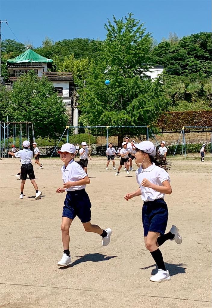 f:id:fukugawa-es:20200528103057j:image