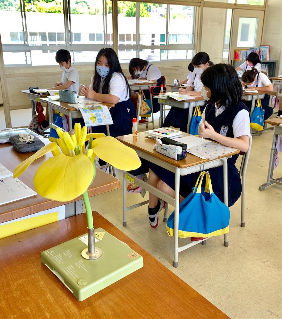 f:id:fukugawa-es:20200528161344j:image