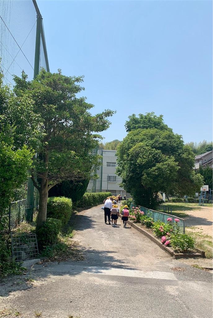 f:id:fukugawa-es:20200529145144j:image