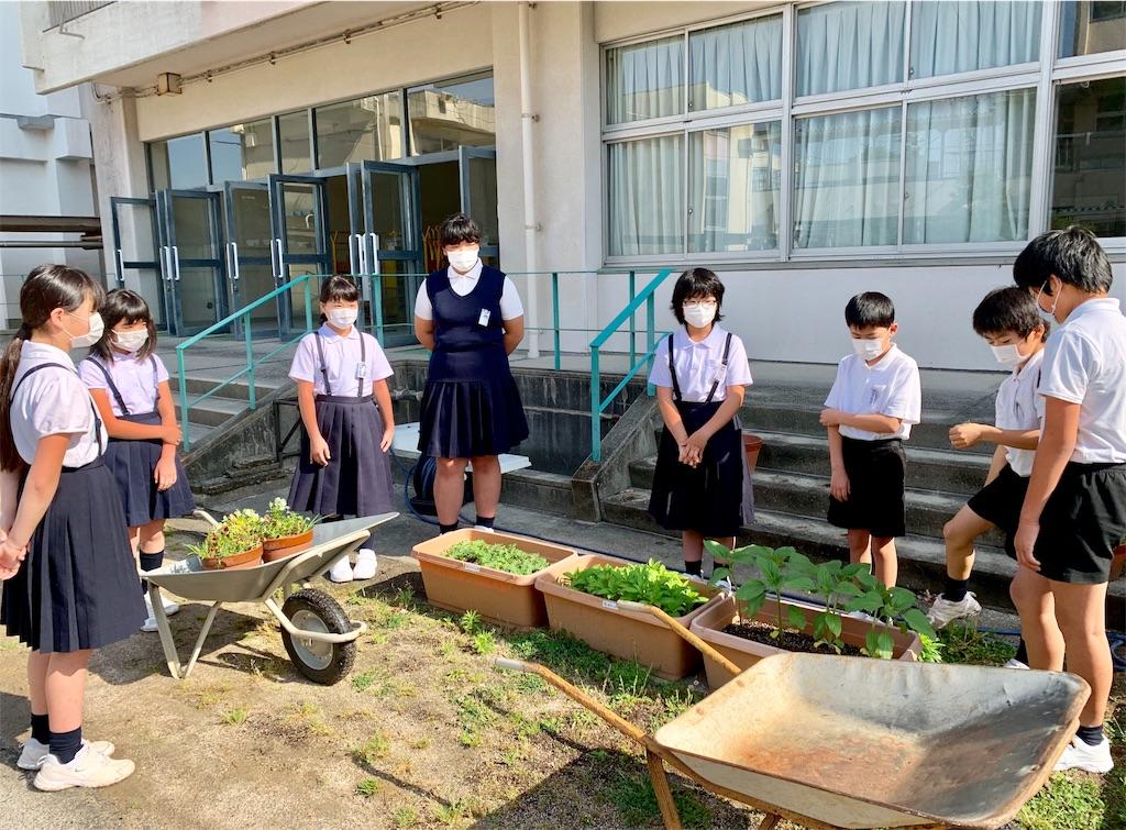 f:id:fukugawa-es:20200602082810j:image