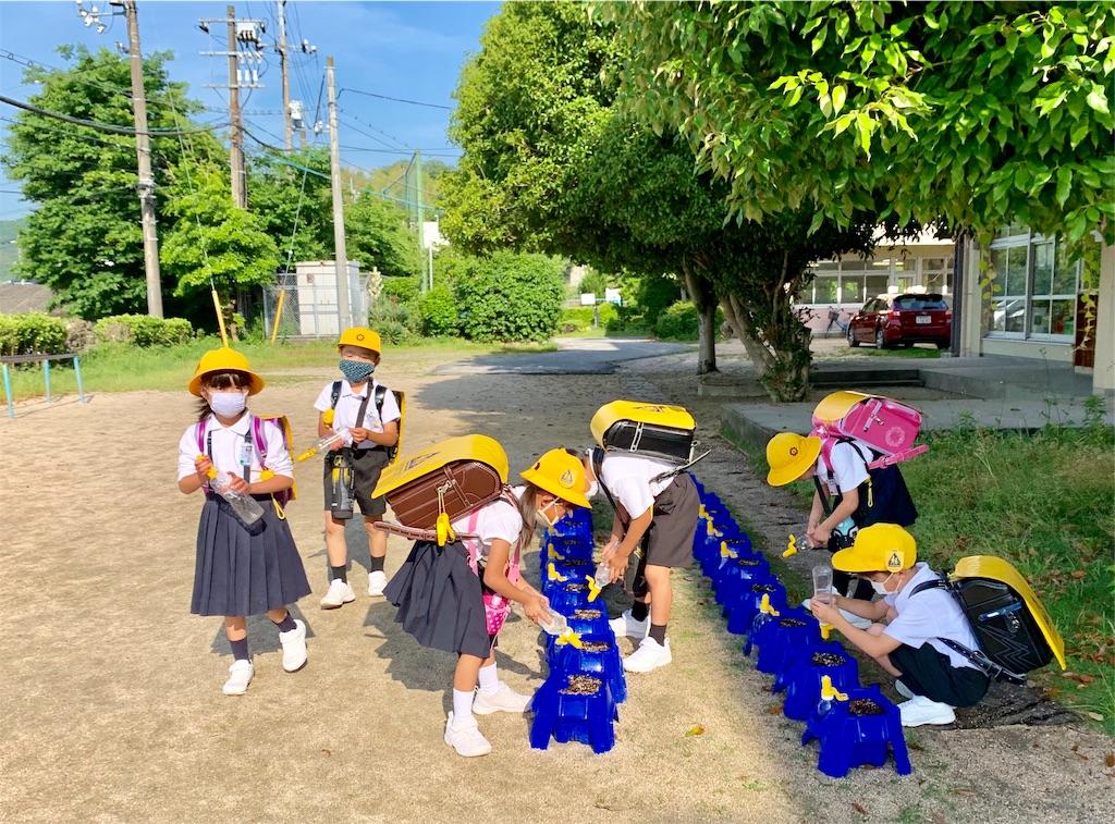 f:id:fukugawa-es:20200602082841j:image