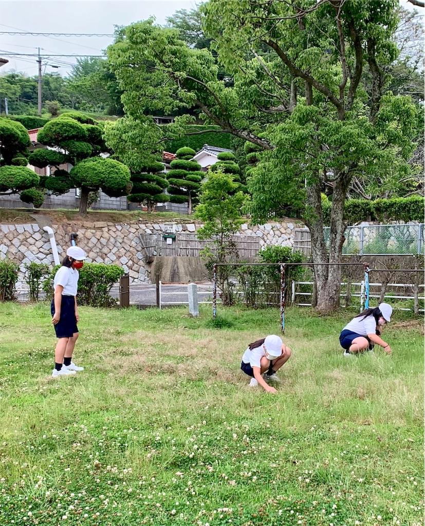 f:id:fukugawa-es:20200603141206j:image