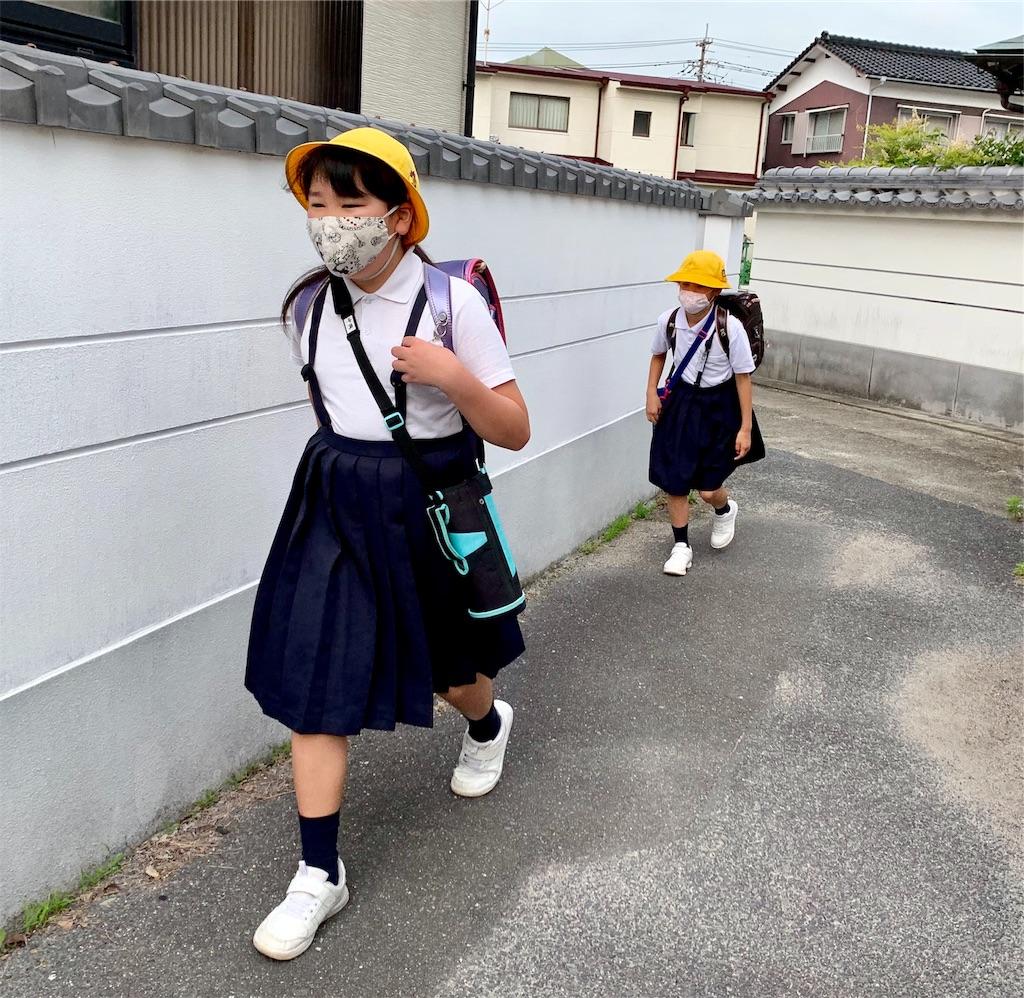 f:id:fukugawa-es:20200604081046j:image