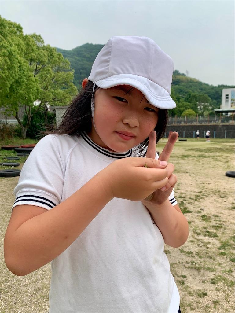 f:id:fukugawa-es:20200605133713j:image