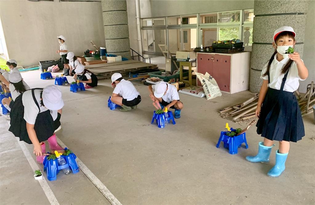 f:id:fukugawa-es:20200618135547j:image