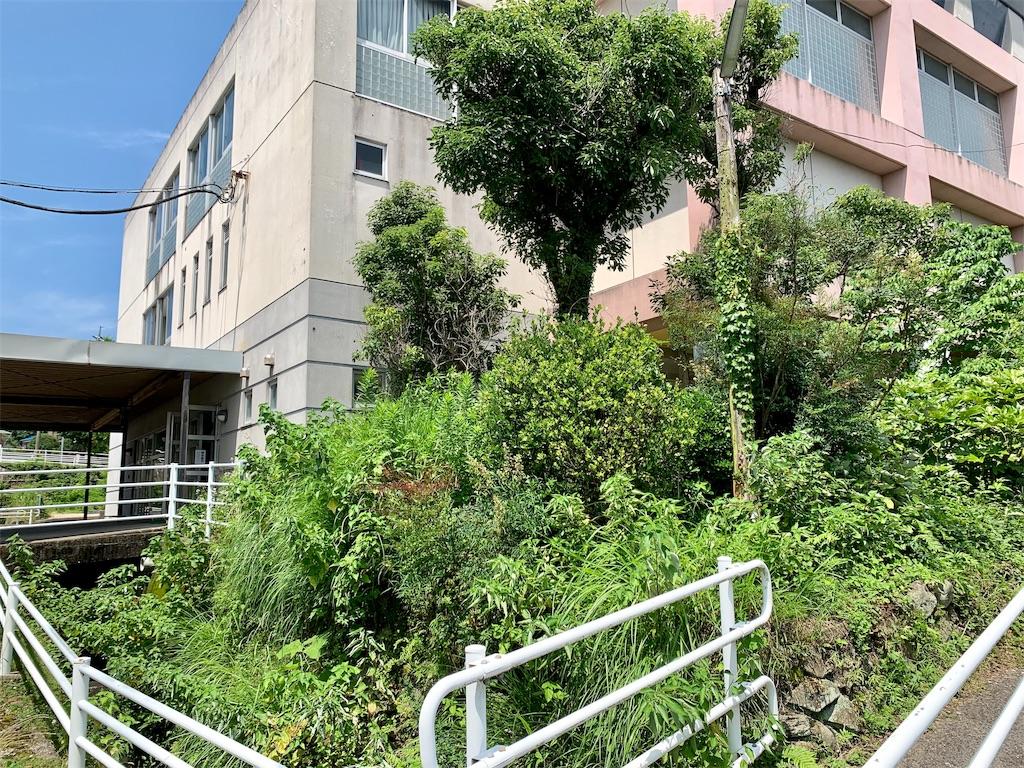 f:id:fukugawa-es:20200626175027j:image