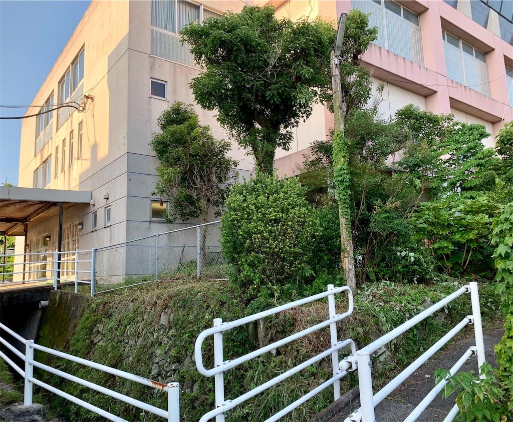 f:id:fukugawa-es:20200626180046j:image