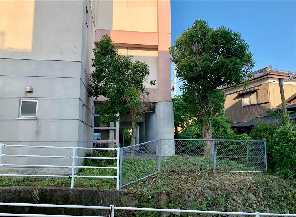 f:id:fukugawa-es:20200626182051j:image