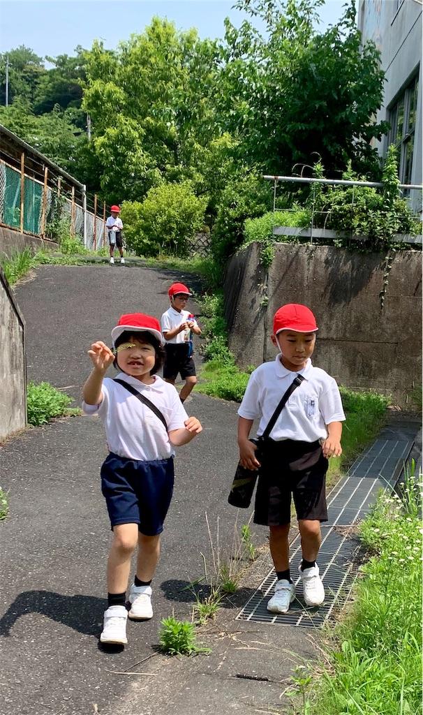 f:id:fukugawa-es:20200629133811j:image