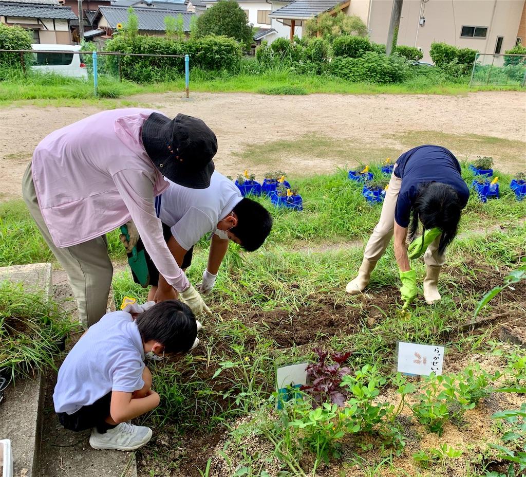 f:id:fukugawa-es:20200720124222j:image