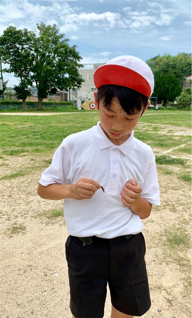 f:id:fukugawa-es:20200720134635j:image