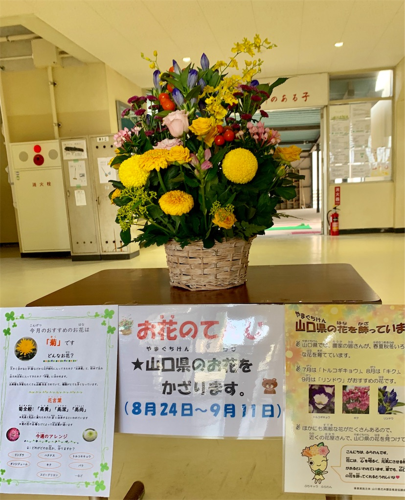 f:id:fukugawa-es:20200825133518j:image