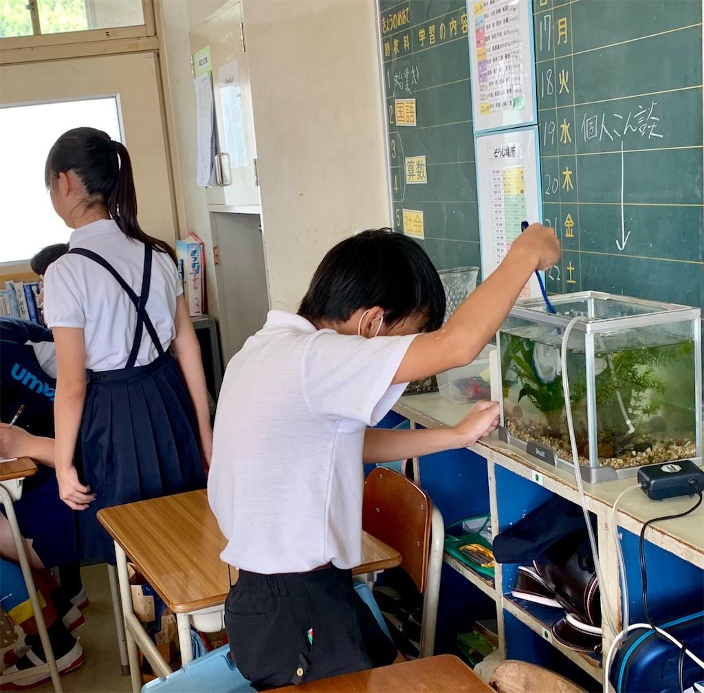 f:id:fukugawa-es:20200901143358j:image