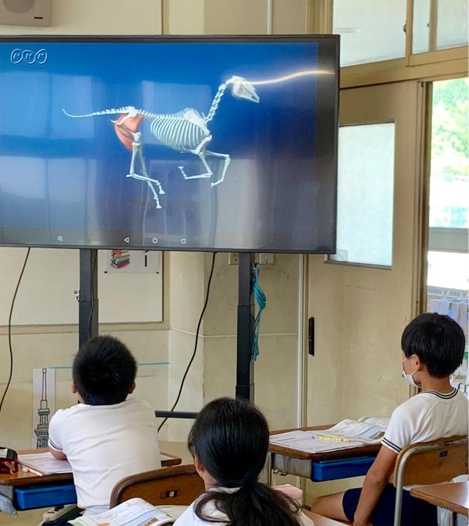 f:id:fukugawa-es:20200915112912j:image