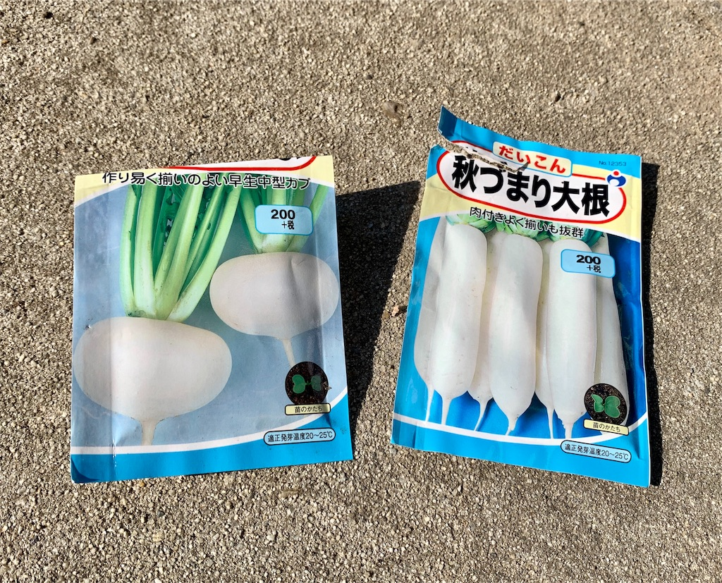 f:id:fukugawa-es:20200923095102j:image