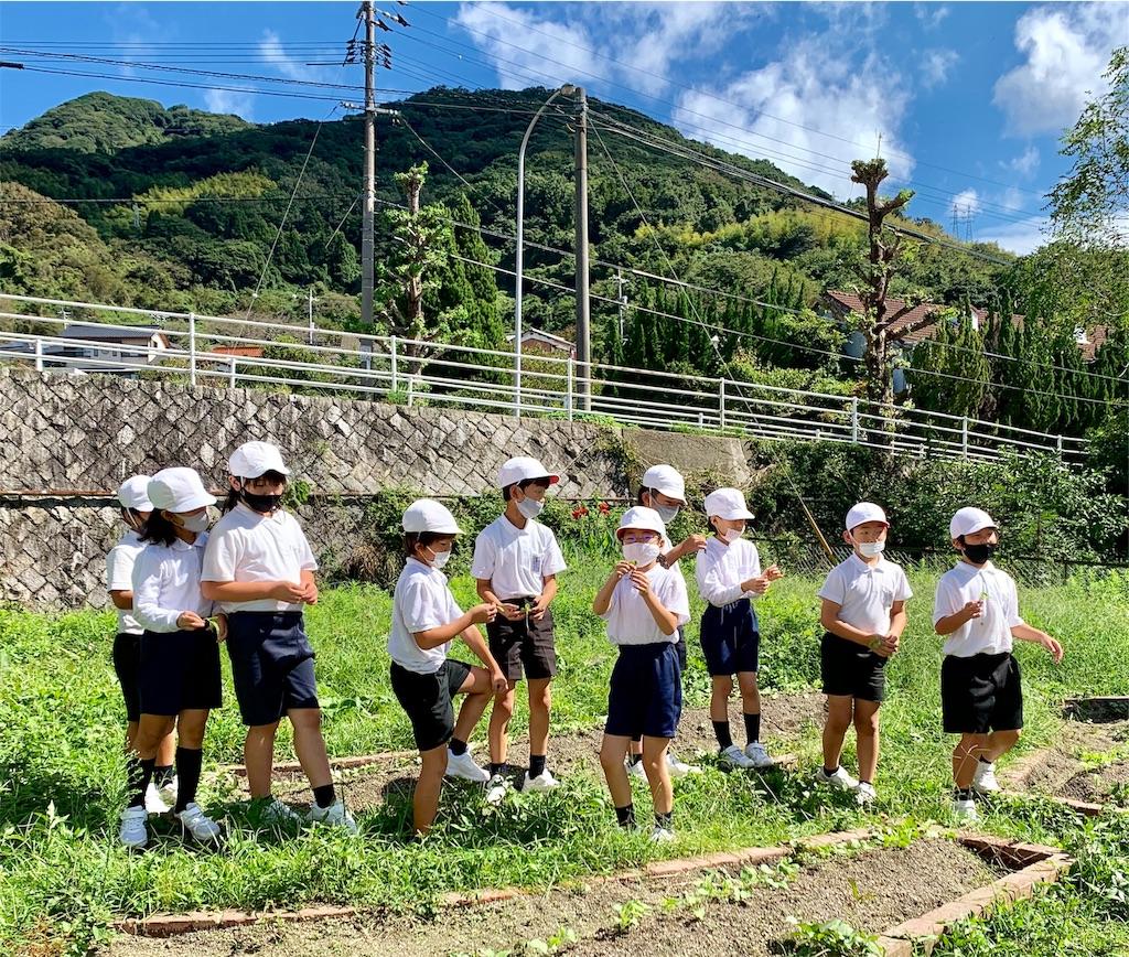 f:id:fukugawa-es:20200925111801j:image