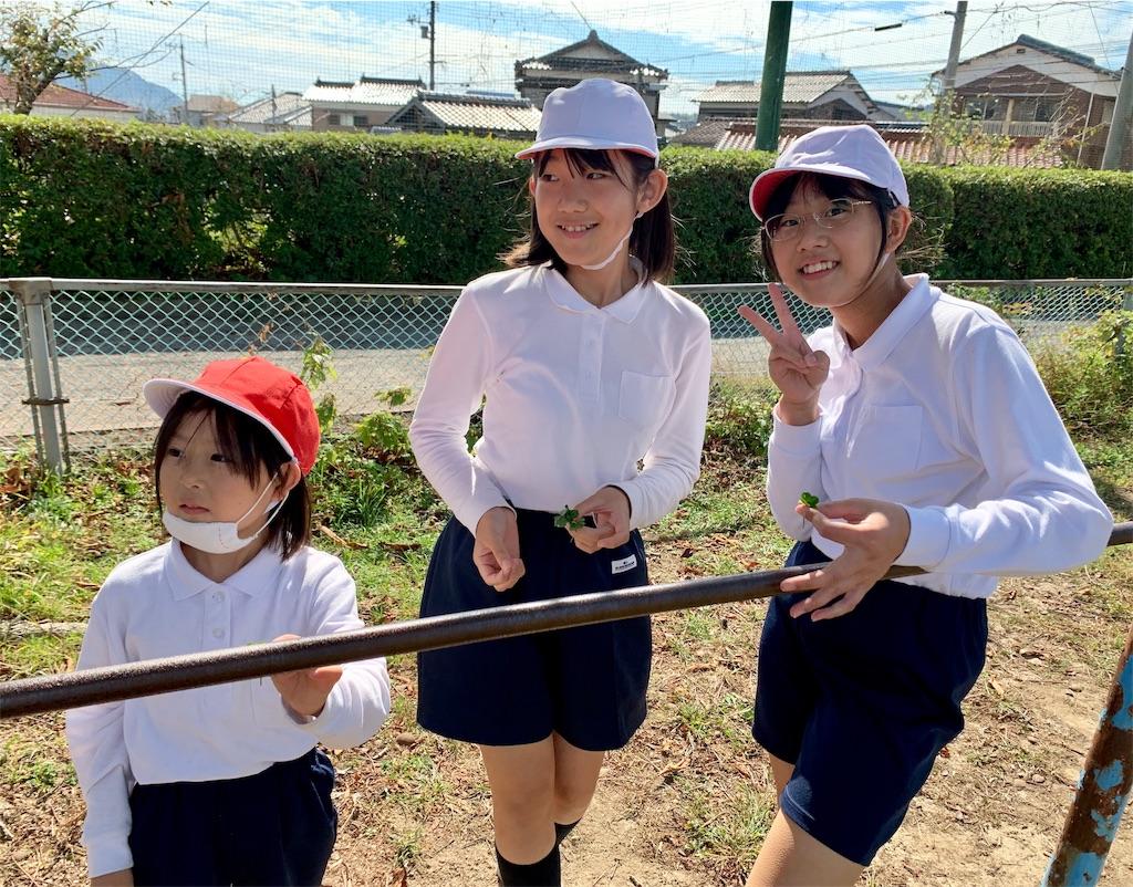 f:id:fukugawa-es:20201019133524j:image