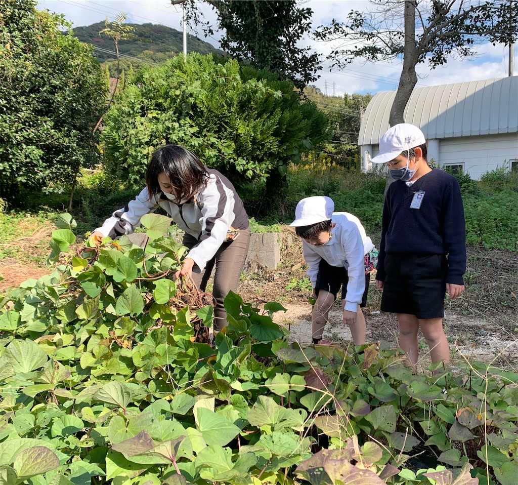 f:id:fukugawa-es:20201110140344j:image