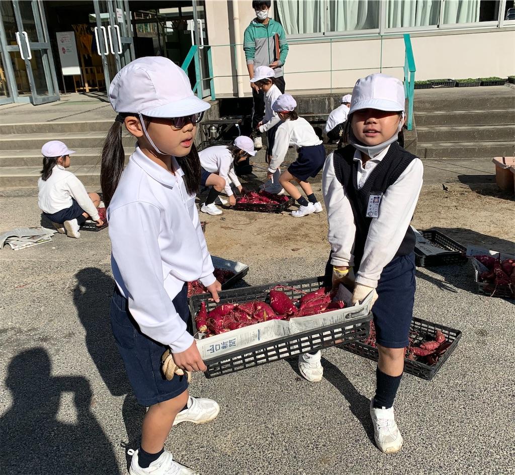 f:id:fukugawa-es:20201111104410j:image
